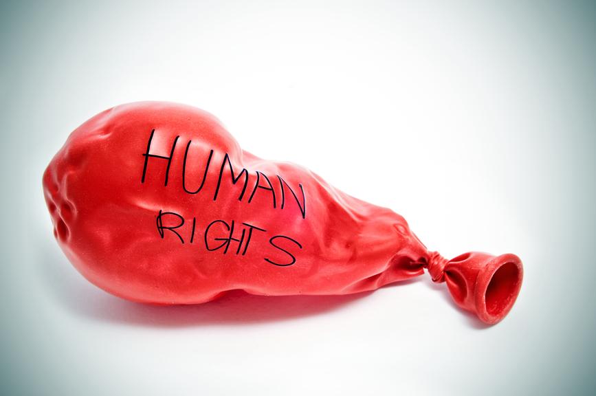 Едногодишна стипендия от Human Rights Watch