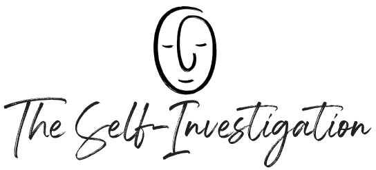 The Self-Investigation